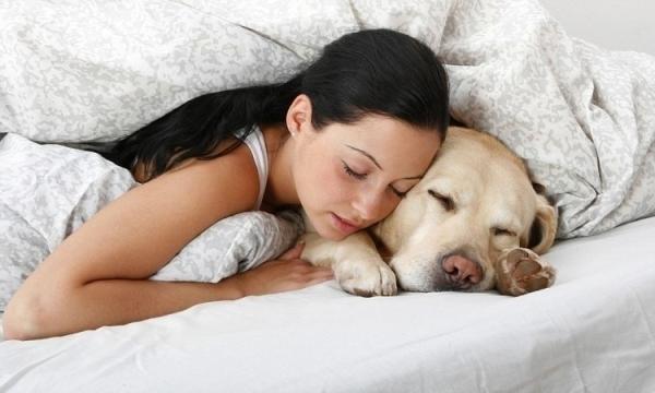 7 მოულოდნელი მიზეზი, რატომ უნდა ეძინოს ძაღლს პატრონის გვერდით