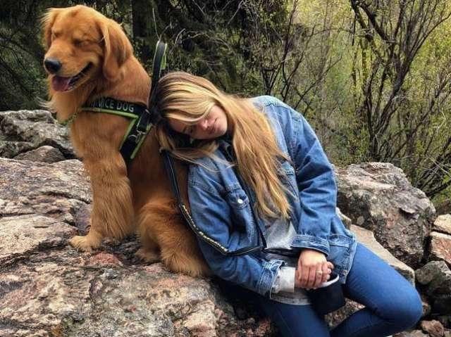 ერთგული ძაღლი ავადმყოფ პატრონს ყველგან თან დაჰყვება
