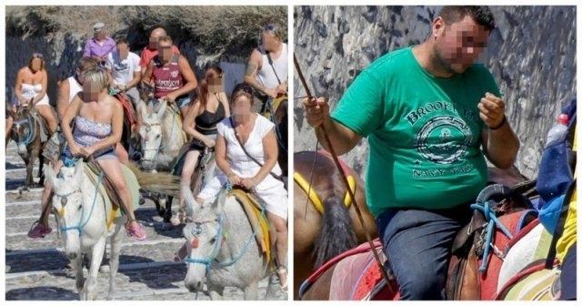 საბერძნეთის კუნძულზე ჭარბ წონიან ტურისტებს ვირზე ჯდომა აეკრძალათ