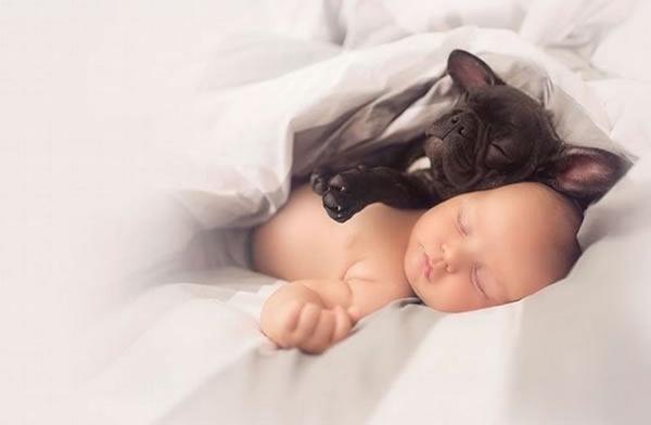 ბავშვი და ლეკვი ერთი და იმავე დღეს დაიბადნენ...
