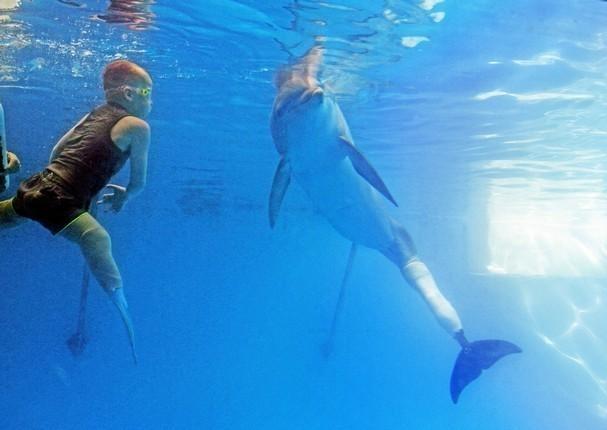 შეზღუდული შესაძლებლობების ბავშვს ცურვაში დელფინი ეხმარება (+ვიდეო)