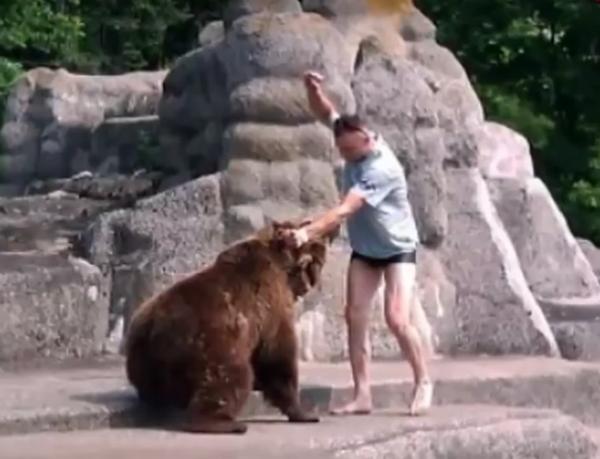 მამაკაცი დათვების გალიაში გადაძვრა და ცხოველს თავს დაესხა