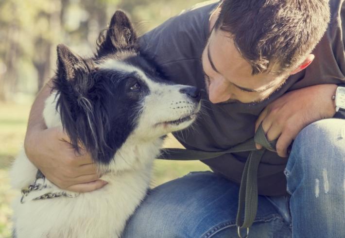 მოსწონს თუ არა, როცა ძაღლს ეხუტებით?