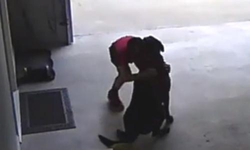 ბავშვი მეზობლის ძაღლს ყოველდღე საიდუმლოდ სტუმრობდა...ეხუტებოდა და მირბოდა (+ვიდეო)