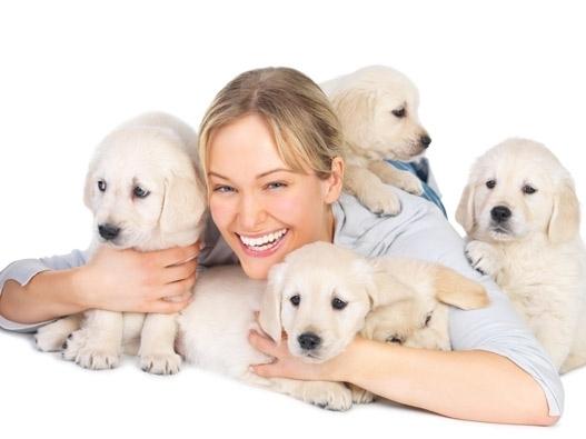 შინაური ცხოველები, ადამიანი და ჯანმრთელობა