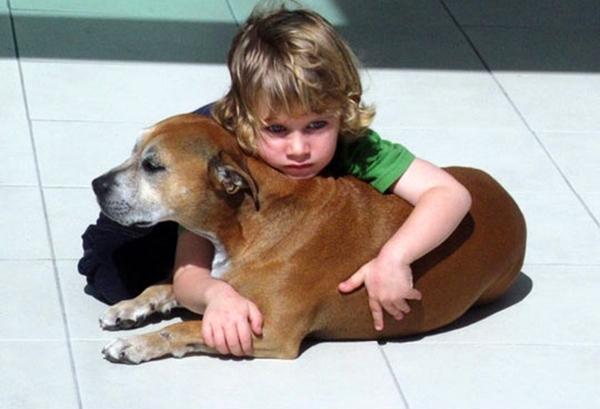 მისი ძაღლი უნდა მომკვდარიყო, მაგრამ ბავშვის რეაქციამ ასეთ მოვლენაზე ყველა გააოგნა
