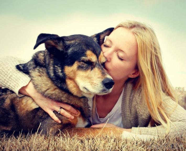 შინაური ცხოველის დაღუპვა ადამიანისთვის იგივეა, რაც ახლო ნათესავის სიკვდილი