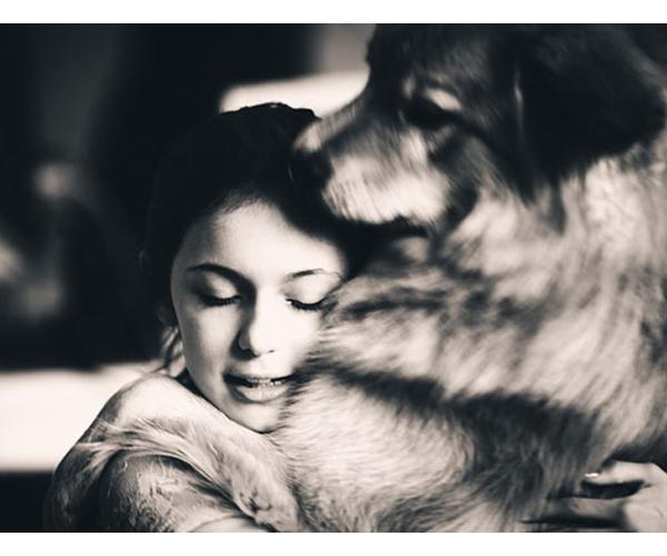 """10 საიდუმლო, როგორ გეუბნებათ თქვენი ძაღლი """"მე შენ მიყვარხარ"""""""