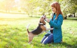 ძაღლი და პატრონი - ვინ არის მათ შორის უფროსი?