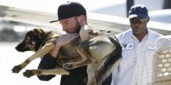 ოკეანეში შემთხვევით გადავარდნილი ძაღლი 5 კვირის შემდეგ დაუბრუნდა მეთევზე პატრონს