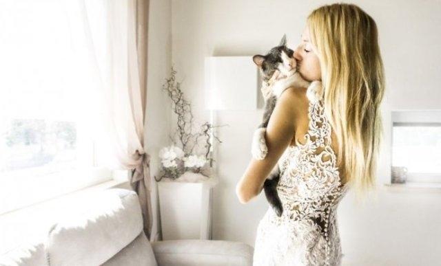 საქორწილო ფოტოები, რომელთა მთავარი გმირებიც კატები არიან