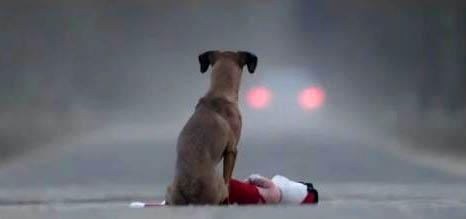 """""""სინდისის საჩუქარი"""" - ახალი მოკლემეტრაჟიანი ფილმი, ანუ დაფიქრდი, სანამ აიყვან - თუ აიყვან, ნუ მიატოვებ (+ვიდეო)"""