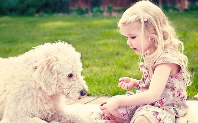 """""""თუ ცხოველი ჯანმრთელია, მისი ბეწვი საშიში არ არის"""" - გვესაუბრება ვეტერინარი ქეთევან კვირკველია"""