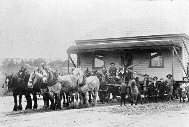 მე-19 საუკუნეში ცხენების დახმარებით შენობებს ადგილს უცვლიდნენ და აი, როგორ...