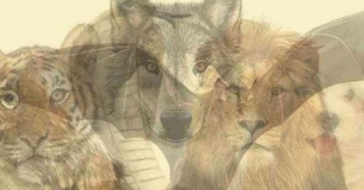 რომელი ცხოველი დაინახეთ პირველი? გაიგეთ მეტი საკუთარი ქვეცნობიერის შესახებ