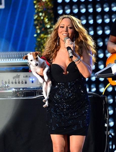 მერაია ქერიმ საკუთარი ძაღლებისთვის თვითმფრინავის ბიზნეს-კლასის ბილეთები 8 000 დოლარად შეიძინა