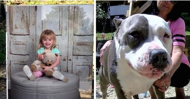 2 წლის გოგონა უკვალოდ გაქრა... სამი დღის შემდეგ მის მშობლებთან მოულოდნელი სტუმარი გამოჩნდა