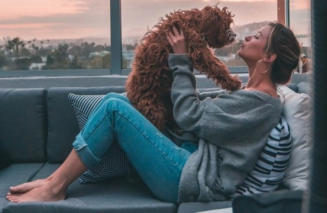 რატომ არის ძაღლი ადამიანის საუკეთესო მეგობარი? სპეციალისტების განმარტება