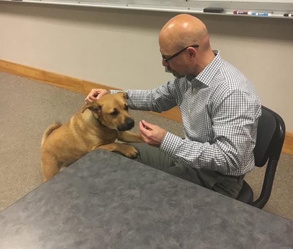 ძაღლი, სახელად მეგი, ლექტორთან ერთად სასწავლო პროცესს უძღვება