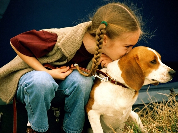 ძაღლებს სიტყვიერ შექებაზე მეტად მოფერება ურჩევნიათ