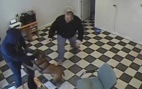 ავტოგასამართ სადგურზე ძაღლმა შეიარაღებული თავდასხმა ჩაშალა (+ვიდეო)