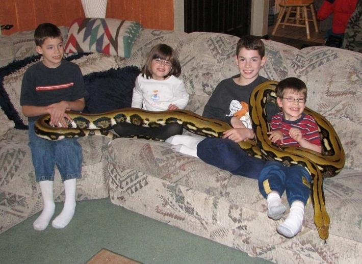 პითონი, რომელიც 4 ბავშვთან ერთად ვეტერინარის ოჯახში ცხოვრობს (+ფოტო)