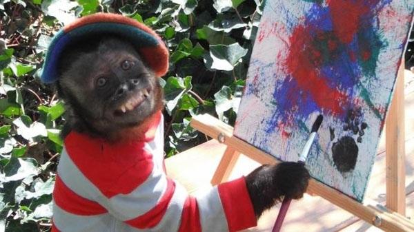 ჰოლივუდში 20 წლის მსახიობი მაიმუნი დააჯილდოვეს (+ფოტო)
