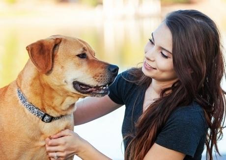 ფსიქიკური პრობლემების მქონე ადამიანებს ექიმები შინაური ცხოველის აყვანას ურჩევენ