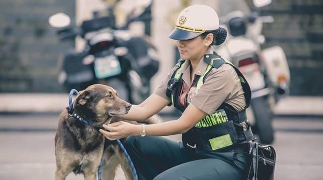 ნახეთ, როგორ ეხმარებიან უსახლკარო ცხოველებს პოლიციელები!