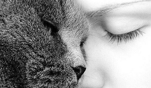 სპეციალისტები განმარტავენ, თუ როგორ გამოხატავს კატა მისთვის საყვარელი ადამიანის მიმართ სიყვარულს
