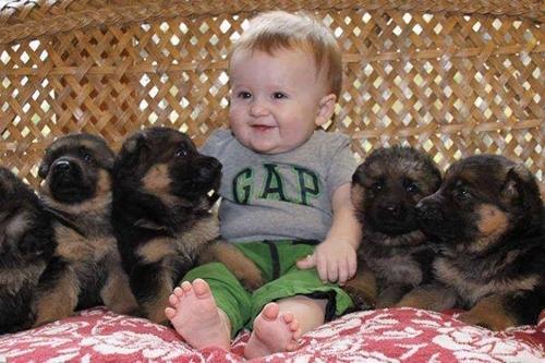 რამდენიმე მიზეზი, თუ რატომ უნდა გაიზარდოს ბავშვი ცხოველის გარემოცვაში