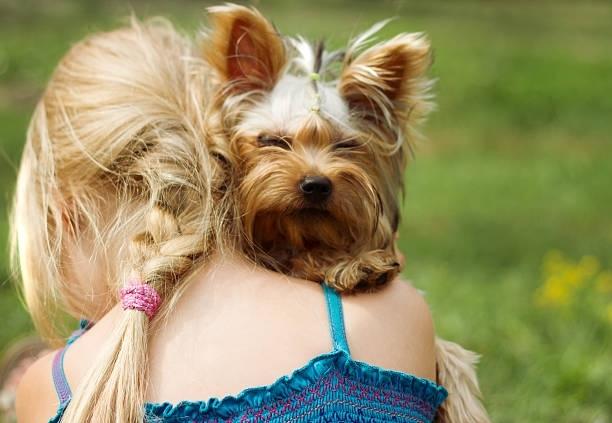თქვენი ზოდიაქოს ნიშანი გეტყვით, თუ რომელი ძაღლის ჯიშის ხასიათი გაქვთ