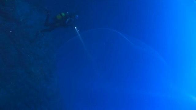 22 მეტრის სიღრმეზე დაივერებმა აღმოაჩინეს ის, რის გამოც ოკეანეში ცურვა უფრო საშიში გახდა! (+ვიდეო)
