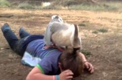 ბატმა პოლიციელი მიწაზე აგორავა (+ვიდეო)