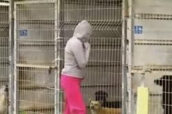 ქალმა ვერ გადაწყვიტა, რომელი ძაღლი აეყვანა თავშესაფრიდან, ამიტომ ყველა სახლში წაიყვანა (+ვიდეო)