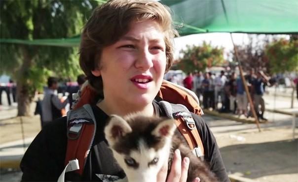 სირიელმა ბიჭმა 500 კმ. ფეხით გაიარა, რათა ძაღლი ომიდან სამშვიდობოს გამოეყვანა