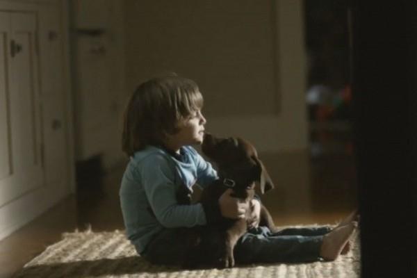 თუ თქვენ გყავთ ძაღლი, ეს პატარა ისტორია აუცილებლად უნდა ნახოთ (+ვიდეო)