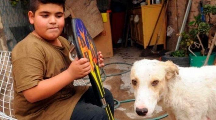 9 წლის ბავშვმა ქუჩაში დაშავებული ძაღლი იპოვა. ცხოველის განკურნებისთვის მან სკეიტბორდის გაყიდვა გადაწყვიტა