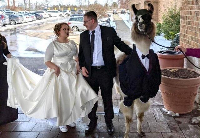 """პატარძალი გაბრაზდა, როდესაც დაინახა, თუ """"ვისთან"""" ერთად მივიდა თავისი ძმა ქორწილში"""