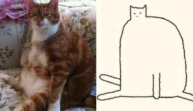 კატების 15 ყველაზე სახალისო ტრანსფორმაცია მხატვარმა მარტივი მონახაზით შექმნა (სახალისო ფოტოები)