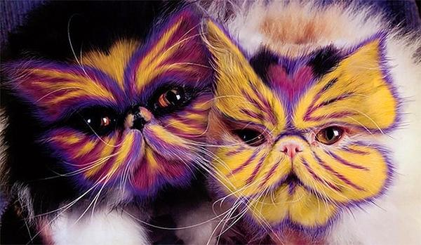 """""""ქეთფეინთინგი"""" - ხელოვნების ერთ-ერთი ფორმა, თუ ცხოველებისადმი უდიერად მოპყრობა? (+ფოტო)"""