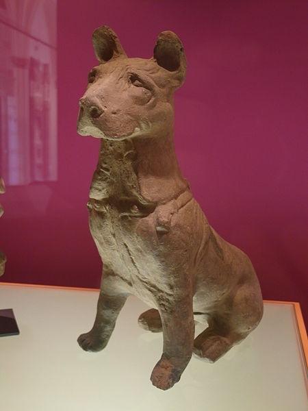 მეცნიერებმა გაარკვიეს, თუ რატომ ჭამდნენ ჩინელები ძველად ძაღლებს