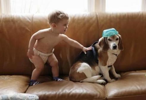 სამი წლის ბავშვმა თავის დაღუპულ ძაღლს წერილი მისწერა და… პასუხი მიიღო
