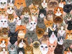 1100 კატა და ერთი ქალბატონი (+ვიდეო)