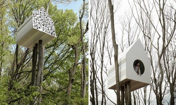 სასტუმრო ფრინველებისთვის (+ფოტო)