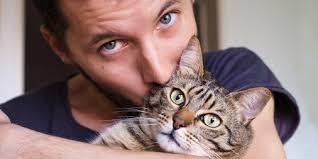 """როგორ გეუბნებათ კატა """"მე შენ ყველაზე მეტად მიყვარხარ """""""