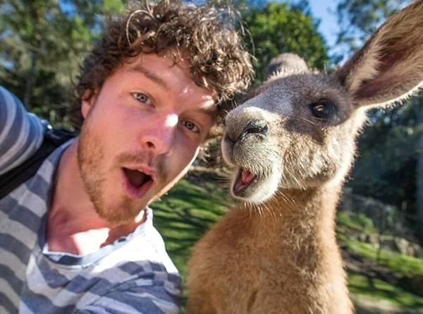 თქვენ ვეღარ განათავსებთ Instagram-ზე ცხოველთან ერთად გადაღებულ სელფებს ... მიზეზს სოციალური ქსელის ადმინისტრაცია განმარტავს