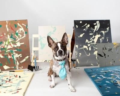 ძაღლი თავისი გაყიდული ნახატებით ცხოველთა თავშესაფარს დაეხმარება (+ვიდეო)