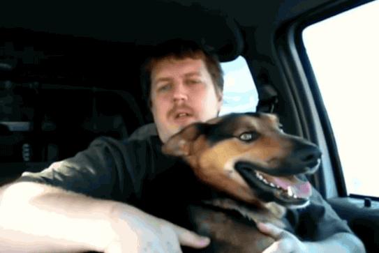 ამ საცოდავმა ძაღლმა მთელი ცხოვრება ჯაჭვით დაბმულმა გაატარა, თუმცა...(+ვიდეო)
