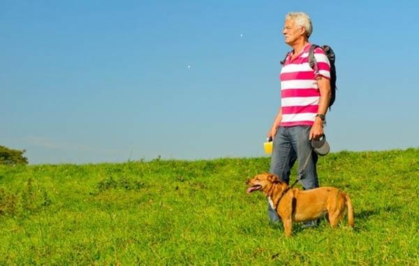 ძაღლი გვიხსნის დეპრესიისგან და დაბერებისგან
